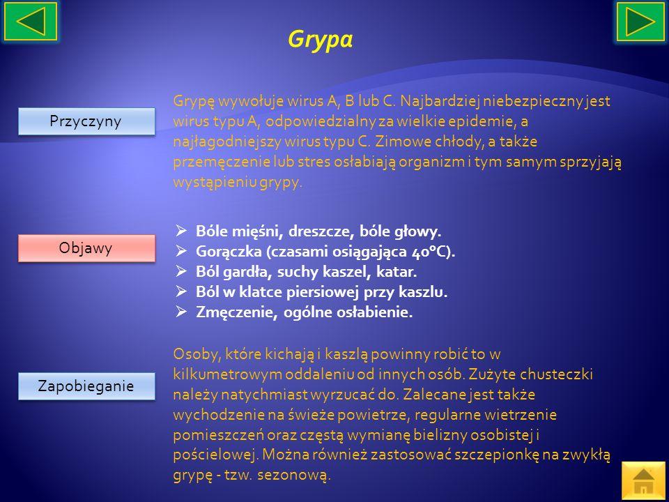 Przyczyny Objawy Zapobieganie Grypę wywołuje wirus A, B lub C. Najbardziej niebezpieczny jest wirus typu A, odpowiedzialny za wielkie epidemie, a najł