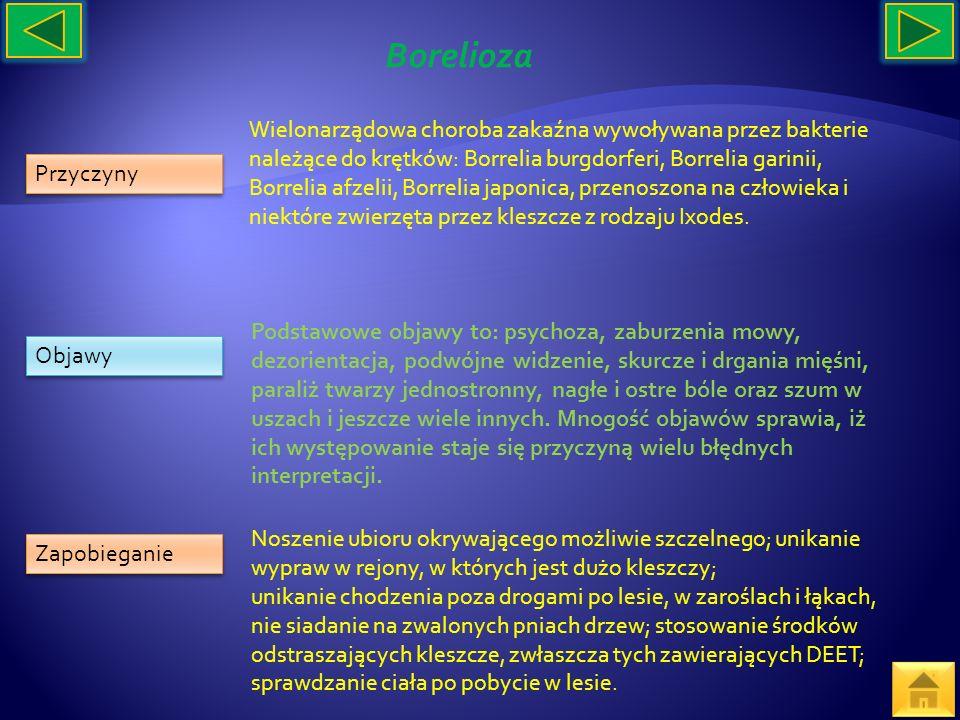 Przyczyny Objawy Zapobieganie Wielonarządowa choroba zakaźna wywoływana przez bakterie należące do krętków: Borrelia burgdorferi, Borrelia garinii, Bo