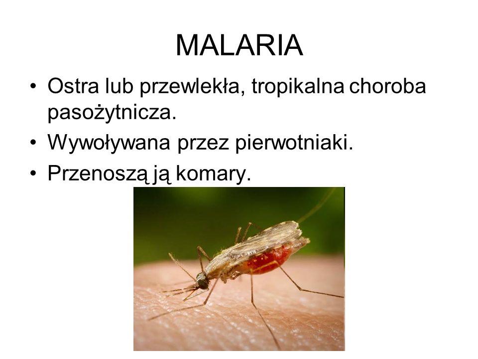 MALARIA Ostra lub przewlekła, tropikalna choroba pasożytnicza. Wywoływana przez pierwotniaki. Przenoszą ją komary.