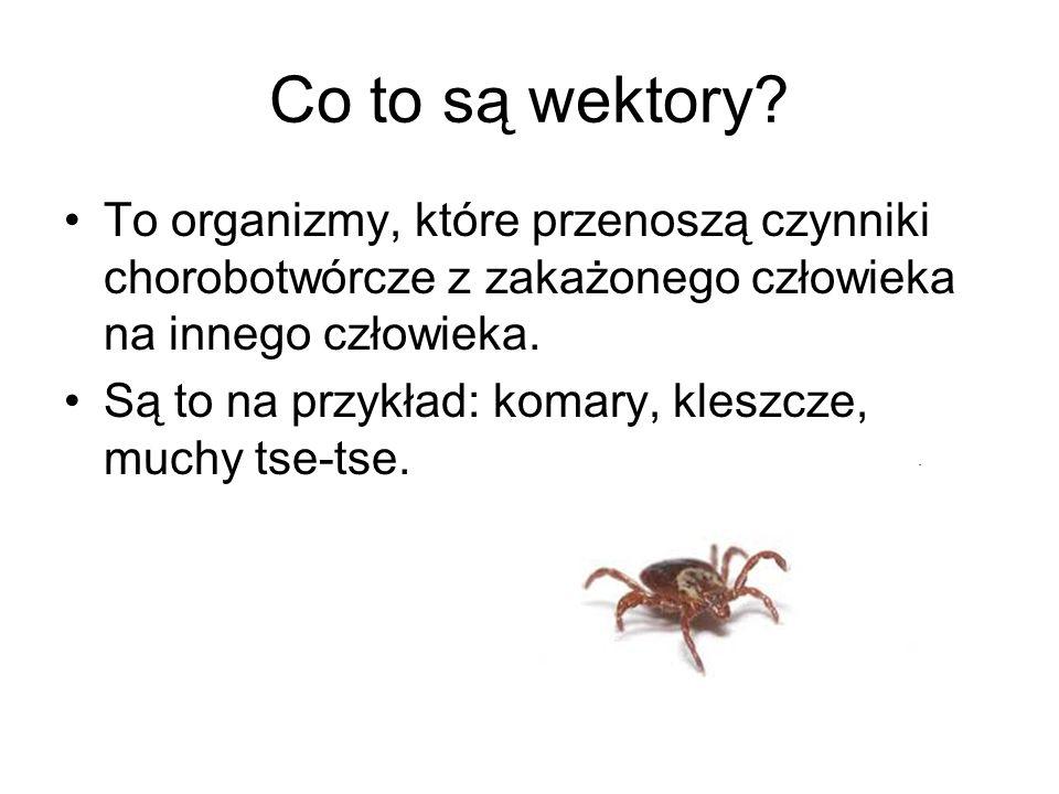 Co to są wektory? To organizmy, które przenoszą czynniki chorobotwórcze z zakażonego człowieka na innego człowieka. Są to na przykład: komary, kleszcz