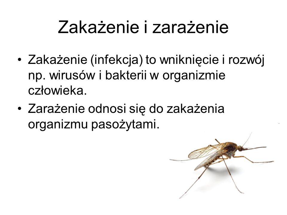 Zakażenie i zarażenie Zakażenie (infekcja) to wniknięcie i rozwój np. wirusów i bakterii w organizmie człowieka. Zarażenie odnosi się do zakażenia org