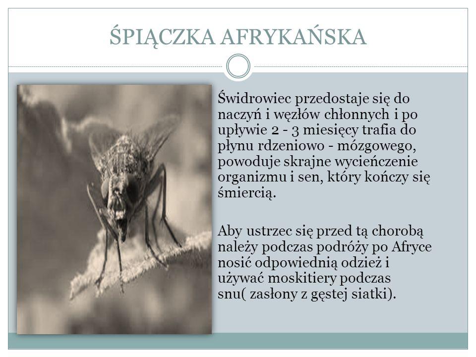 BORELIOZA Jest chorobą przenoszoną głównie przez kleszcze (czasami również komary, pchły i muchy).