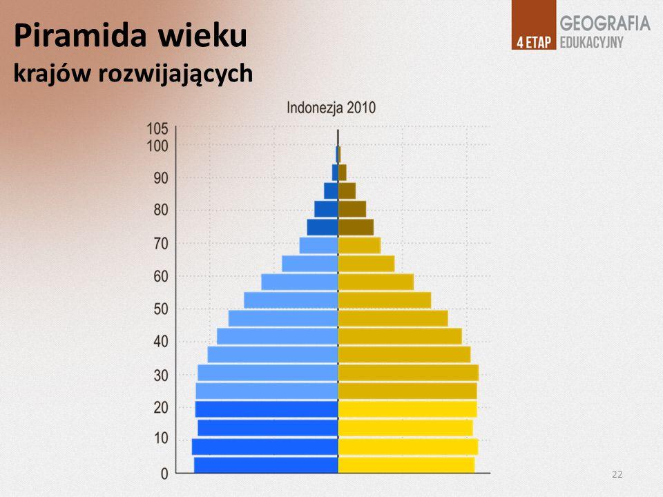 Piramida wieku krajów rozwijających 22