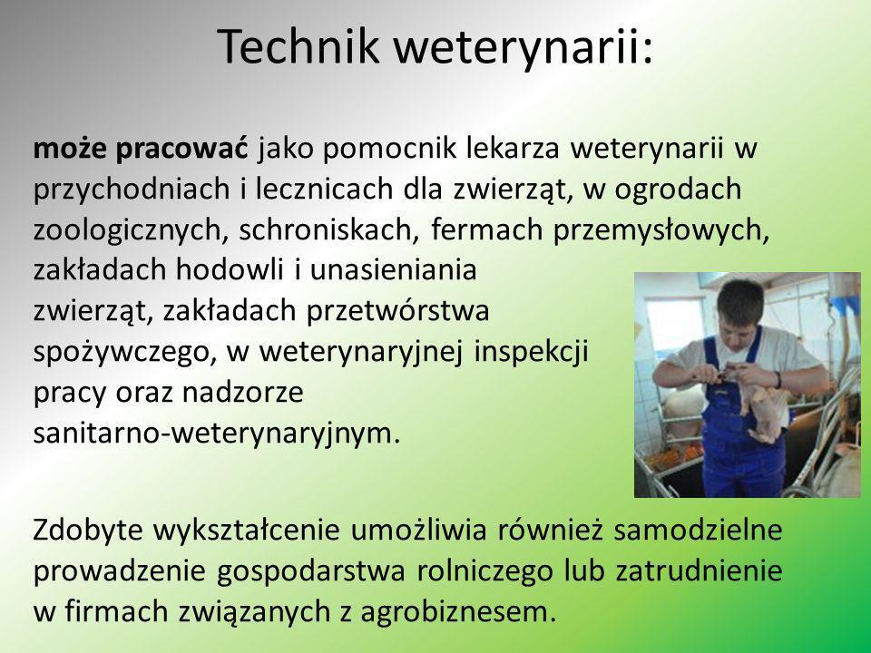Technik weterynarii: może pracować jako pomocnik lekarza weterynarii w przychodniach i lecznicach dla zwierząt, w ogrodach zoologicznych, schroniskach