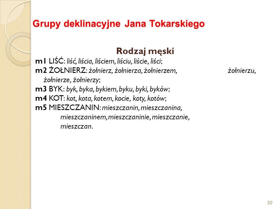 20 Grupy deklinacyjne Jana Tokarskiego Rodzaj męski m1 LIŚĆ: liść, liścia, liściem, liściu, liście, liści; m2 ŻOŁNIERZ: żołnierz, żołnierza, żołnierze