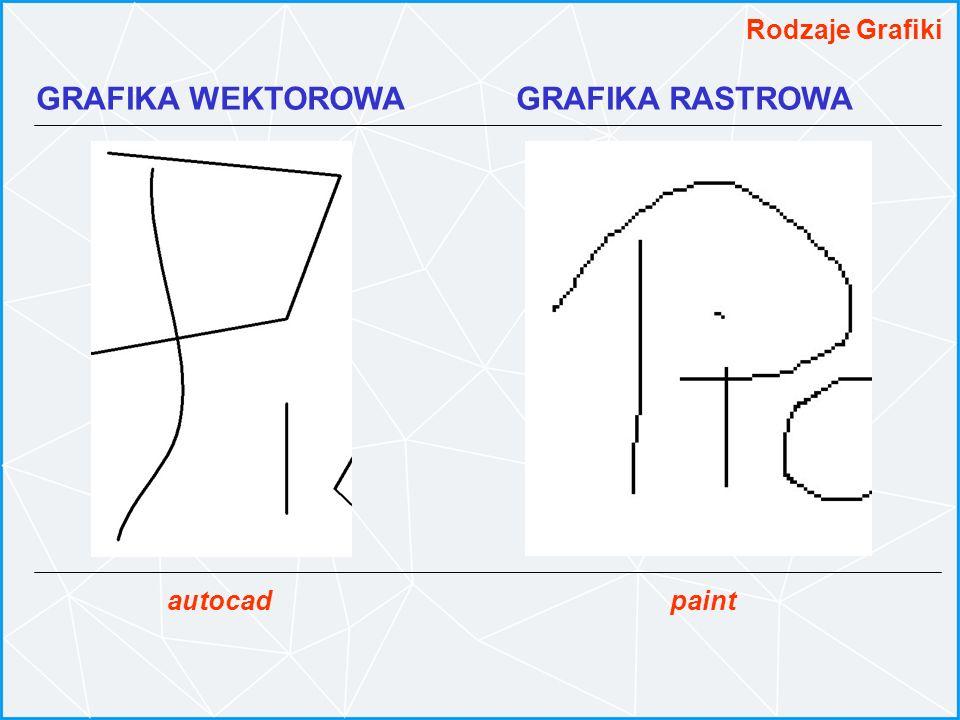 GRAFIKA WEKTOROWA GRAFIKA RASTROWA Rodzaje Grafiki paintautocad