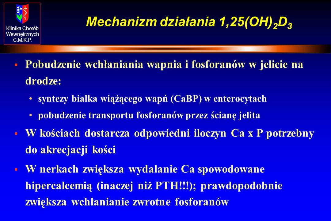 Klinika Chorób Wewnętrznych C.M.K.P. Witamina D - przemiany, działanie na homeostazę Ca-P 7-DHC Pre D 3 ciepło 25-hydroksylaza Vit D 25-OH-D 25-OH-D-1