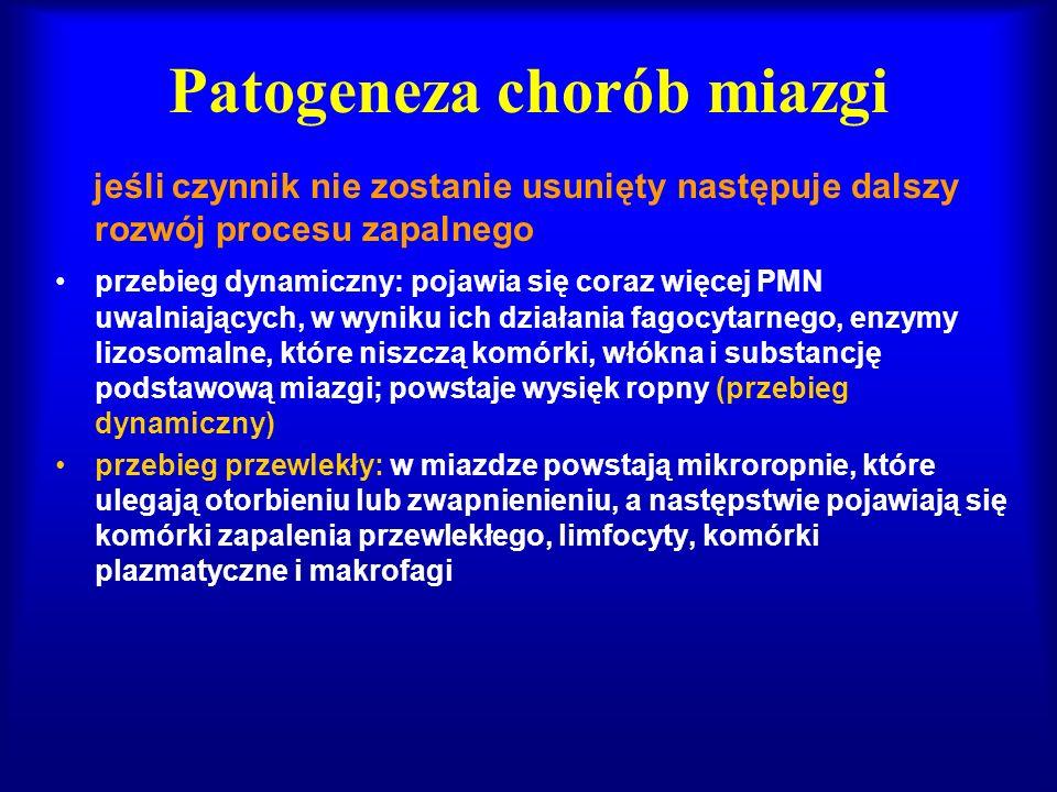 Patogeneza chorób miazgi jeśli czynnik nie zostanie usunięty następuje dalszy rozwój procesu zapalnego przebieg dynamiczny: pojawia się coraz więcej P