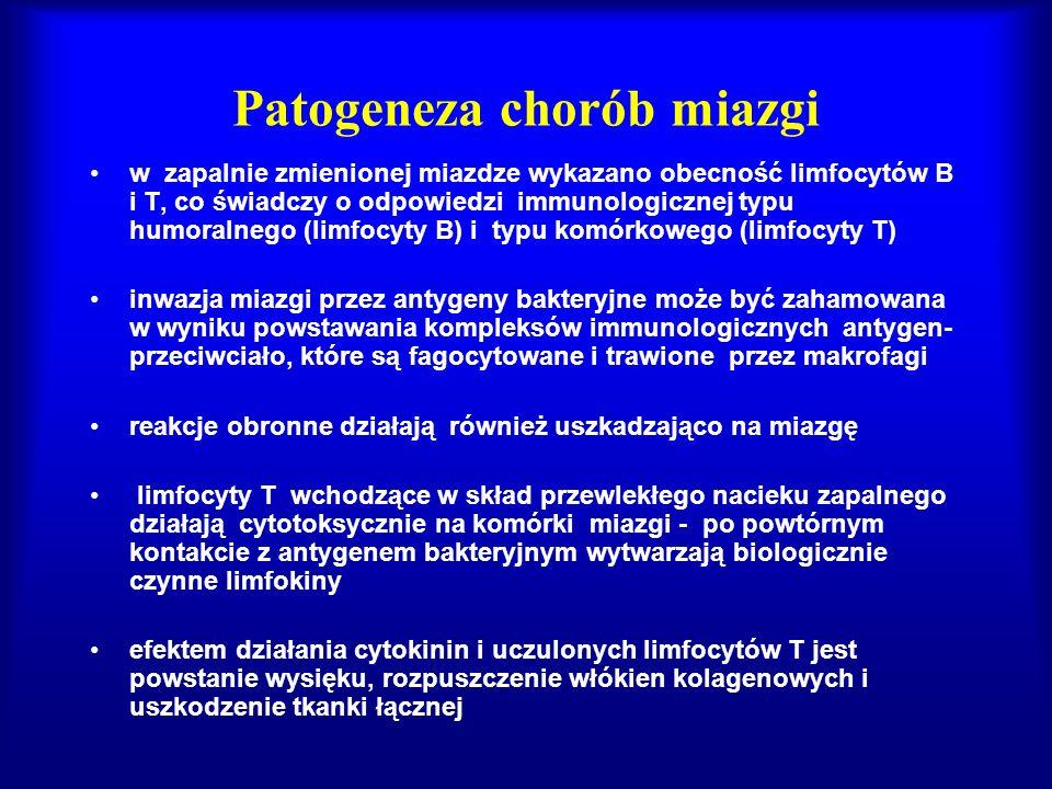 Patogeneza chorób miazgi w zapalnie zmienionej miazdze wykazano obecność limfocytów B i T, co świadczy o odpowiedzi immunologicznej typu humoralnego (