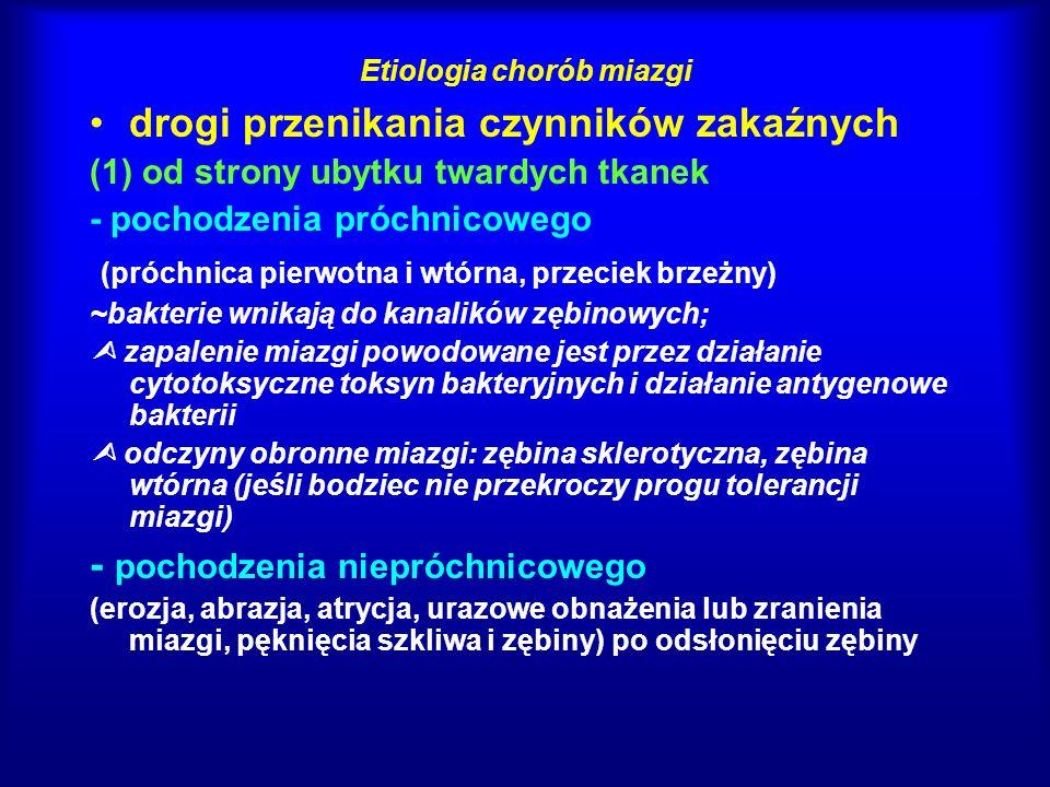 Etiologia chorób miazgi drogi przenikania czynników zakaźnych (2) przez kieszonkę patologiczną (naczynia krwionośne znajdujące się w odgałęzieniach bocznych kanału i kanałach miazgowo-ozębnowych) (3) na drodze krwiopochodnej (w przebiegu niektórych chorób zakaźnych, np.