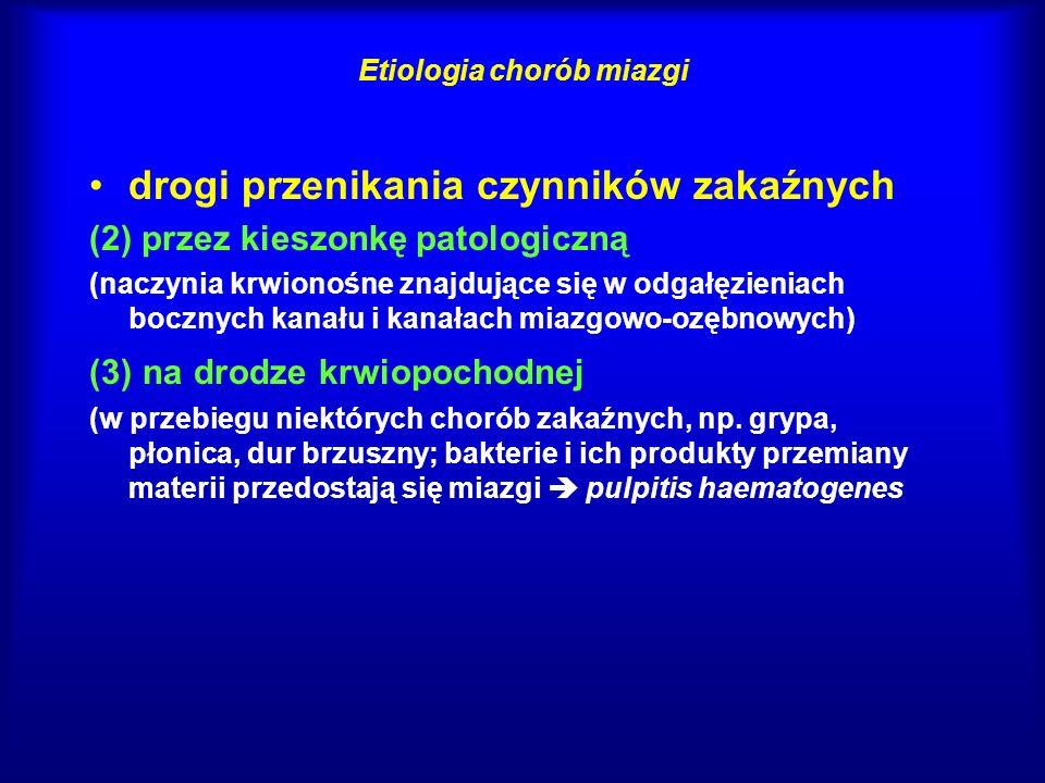 Etiologia chorób miazgi drogi przenikania czynników zakaźnych (2) przez kieszonkę patologiczną (naczynia krwionośne znajdujące się w odgałęzieniach bo