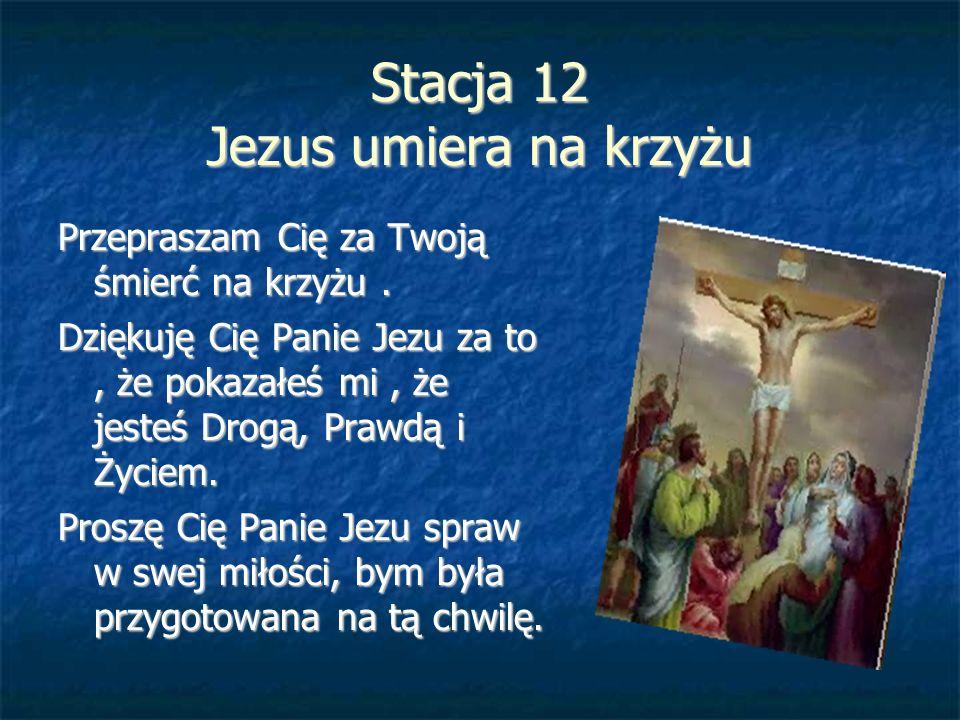 Stacja 12 Jezus umiera na krzyżu Przepraszam Cię za Twoją śmierć na krzyżu. Dziękuję Cię Panie Jezu za to, że pokazałeś mi, że jesteś Drogą, Prawdą i