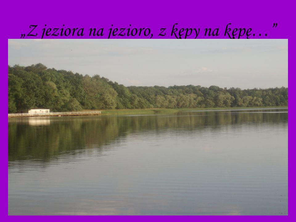 13 Z jeziora na jezioro, z kępy na kępę…