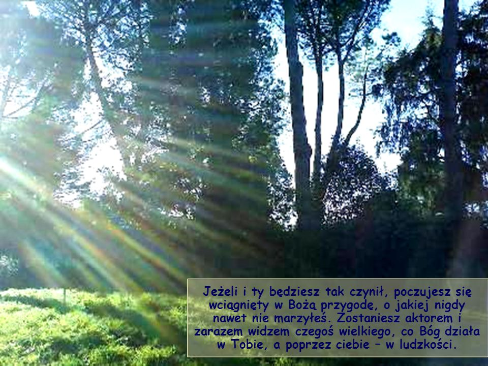 Chrześcijanin, a także każdy człowiek dobrej woli, został powołany, by zdążać w kierunku tego słońca, za światłem swego własnego promienia, różnego i