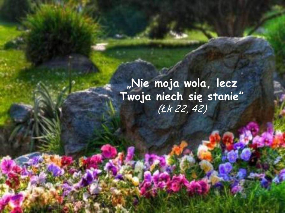 Nie moja wola, lecz Twoja niech się stanie (Łk 22, 42)