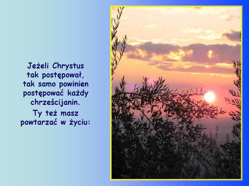 Chrześcijanin, a także każdy człowiek dobrej woli, został powołany, by zdążać w kierunku tego słońca, za światłem swego własnego promienia, różnego i odrębnego od innych.