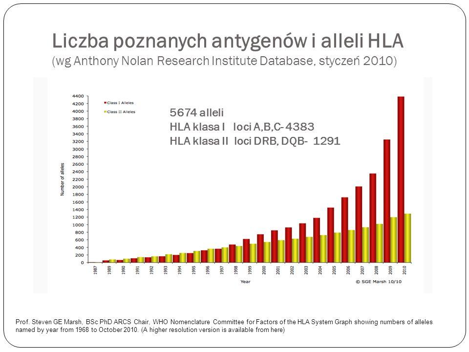 Liczba poznanych antygenów i alleli HLA (wg Anthony Nolan Research Institute Database, styczeń 2010) Prof. Steven GE Marsh, BSc PhD ARCS Chair, WHO No