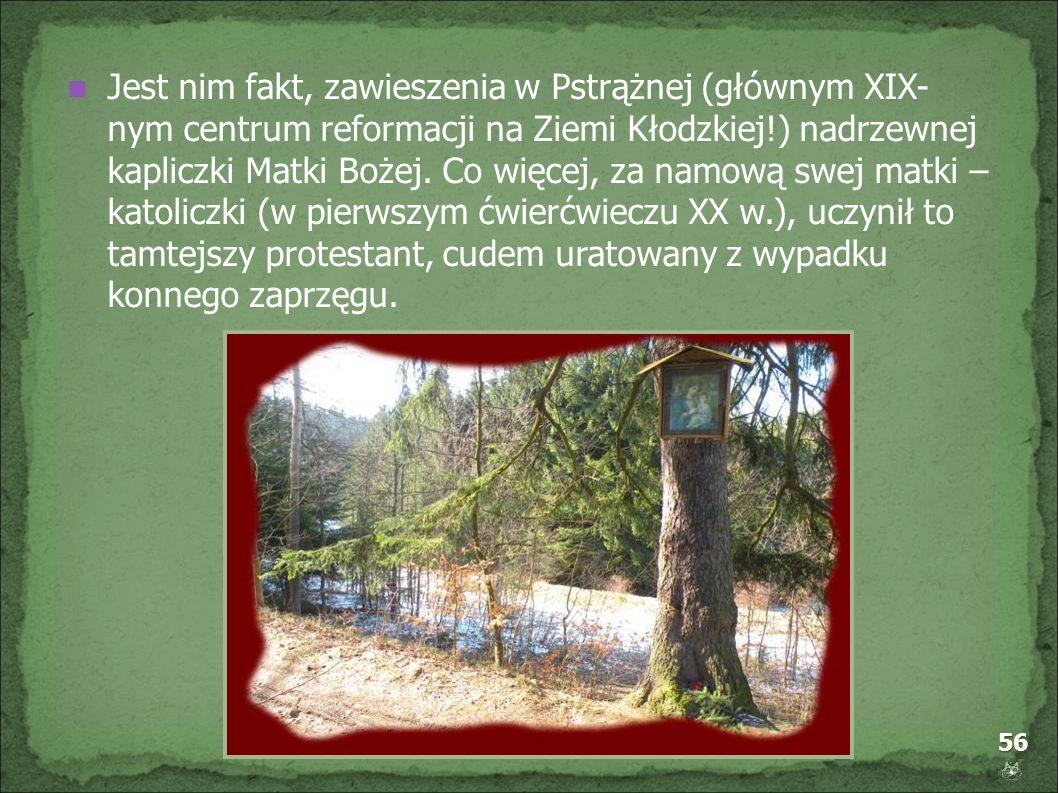 56 Jest nim fakt, zawieszenia w Pstrążnej (głównym XIX- nym centrum reformacji na Ziemi Kłodzkiej!) nadrzewnej kapliczki Matki Bożej. Co więcej, za na