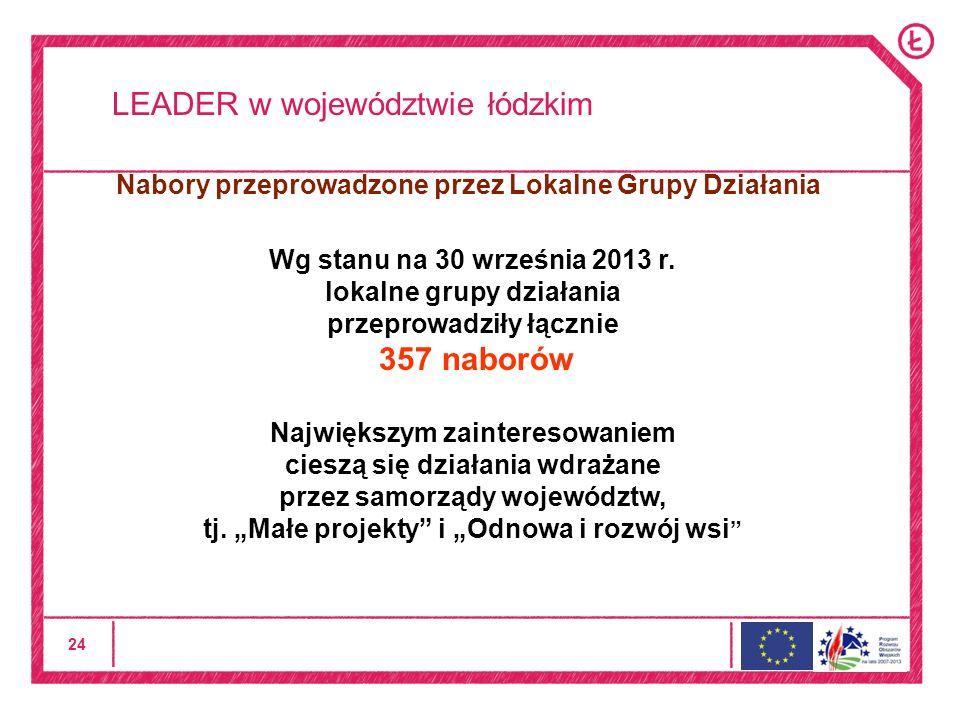 24 LEADER w województwie łódzkim Wg stanu na 30 września 2013 r.