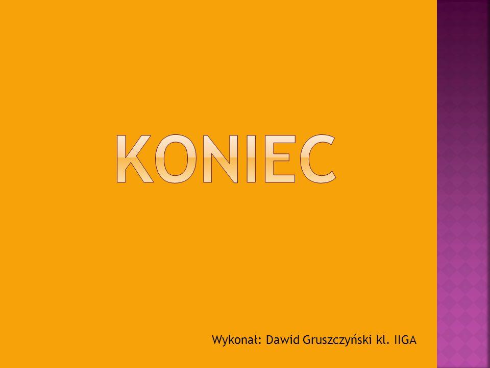 Wykonał: Dawid Gruszczyński kl. IIGA