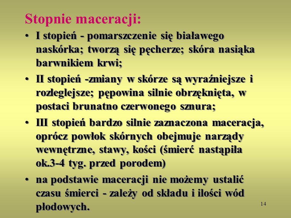 14 Stopnie maceracji: I stopień - pomarszczenie się białawego naskórka; tworzą się pęcherze; skóra nasiąka barwnikiem krwi; II stopień -zmiany w skórz