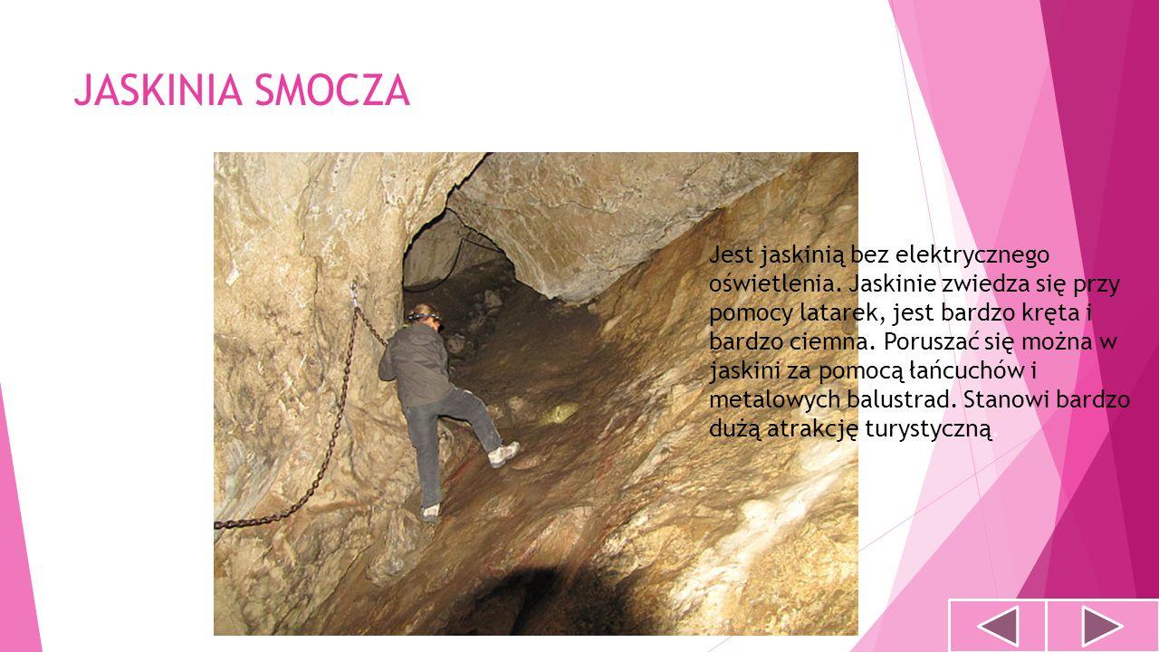 JASKINIA SMOCZA Jest jaskinią bez elektrycznego oświetlenia. Jaskinie zwiedza się przy pomocy latarek, jest bardzo kręta i bardzo ciemna. Poruszać się