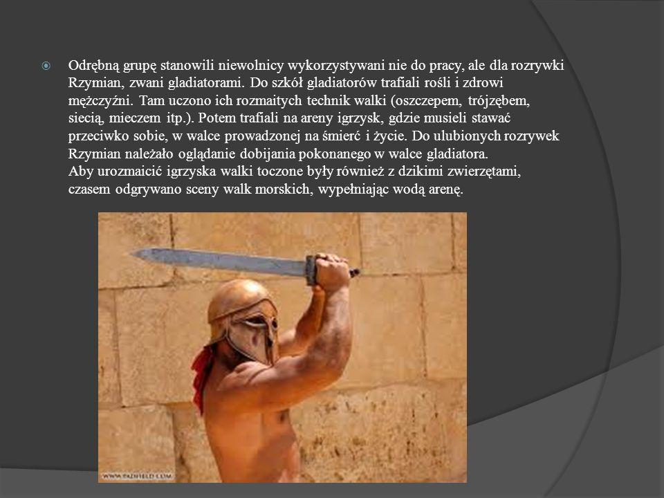 Odrębną grupę stanowili niewolnicy wykorzystywani nie do pracy, ale dla rozrywki Rzymian, zwani gladiatorami. Do szkół gladiatorów trafiali rośli i zd