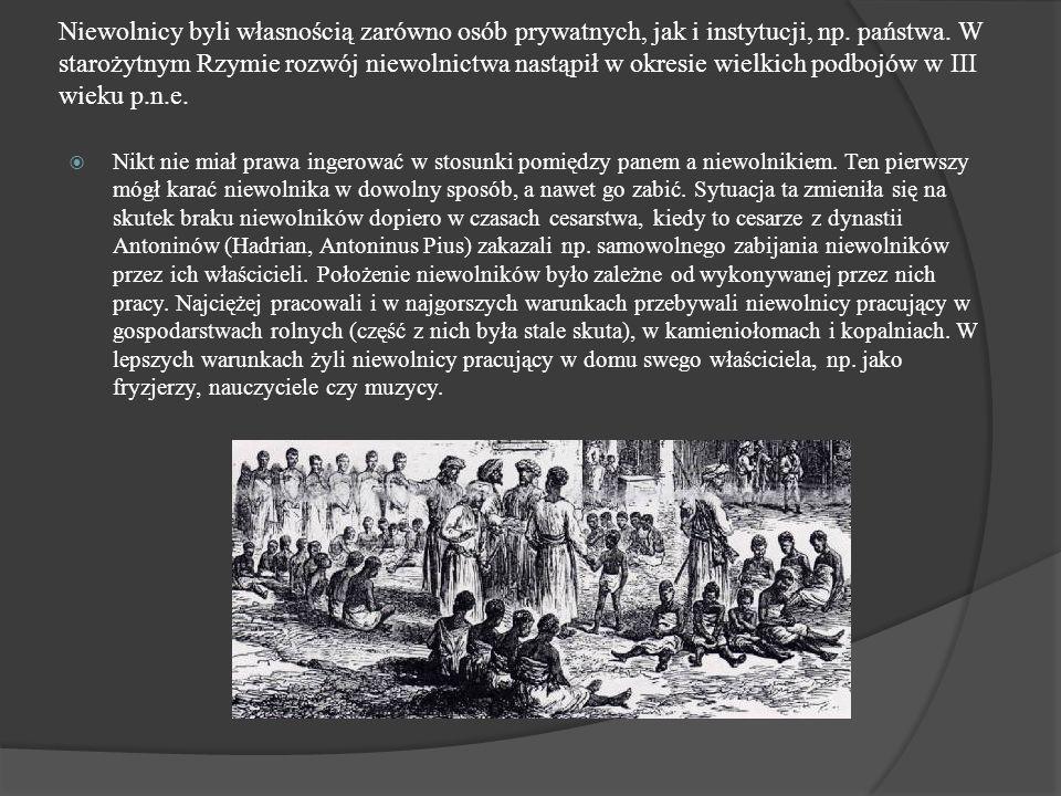 Niewolnicy byli własnością zarówno osób prywatnych, jak i instytucji, np. państwa. W starożytnym Rzymie rozwój niewolnictwa nastąpił w okresie wielkic