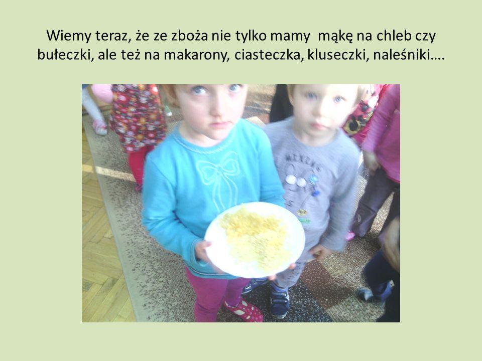 Wiemy teraz, że ze zboża nie tylko mamy mąkę na chleb czy bułeczki, ale też na makarony, ciasteczka, kluseczki, naleśniki….