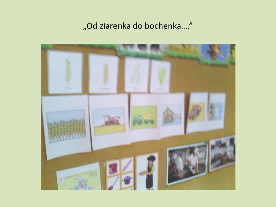 Od ziarenka do bochenka….