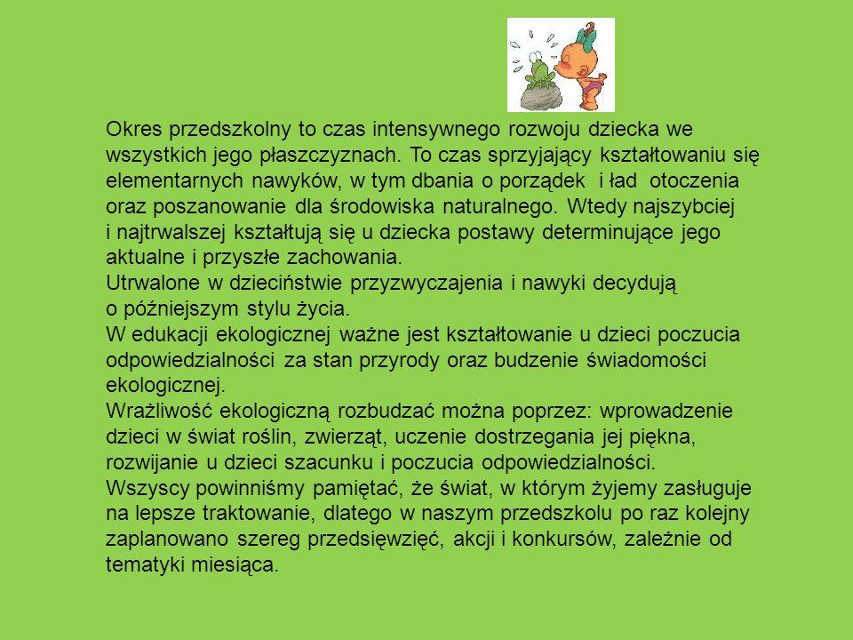 Nasze działania w roku szkolnym 2012/2013 Styczeń Nasi skrzydlaci przyjaciele.