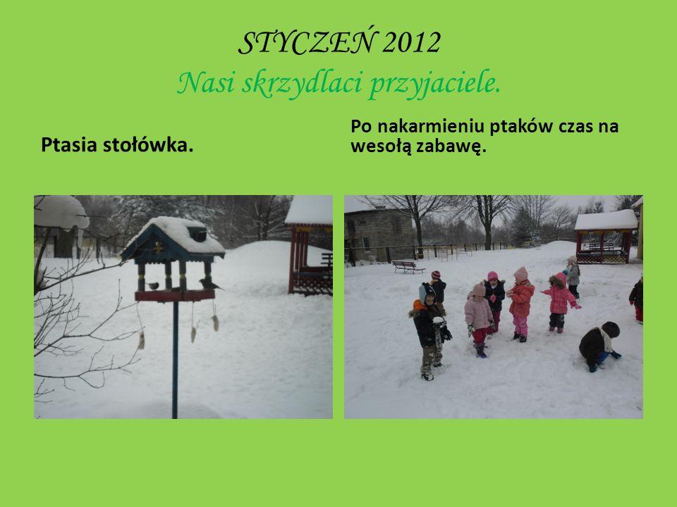 LISTOPAD 2012 Zapasy na zimę Zbiórka pożywienia dla zwierząt ze schroniska. Witaminowe skarby.