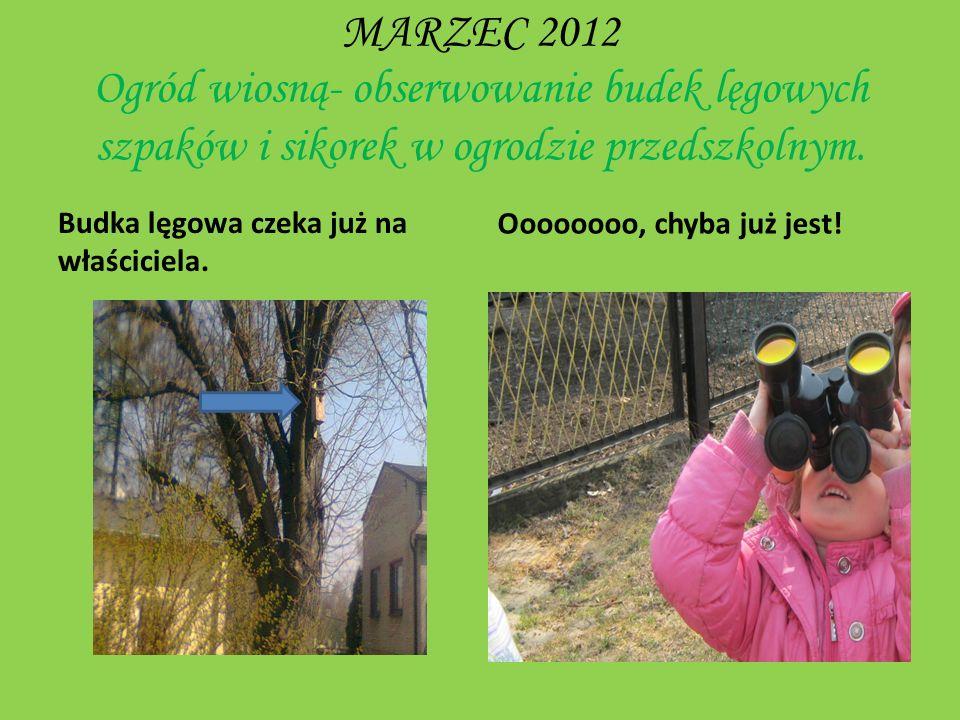 KWIECIEŃ 2012 Jestem sobie ogrodniczka Nasz przedszkolny miniogródek.