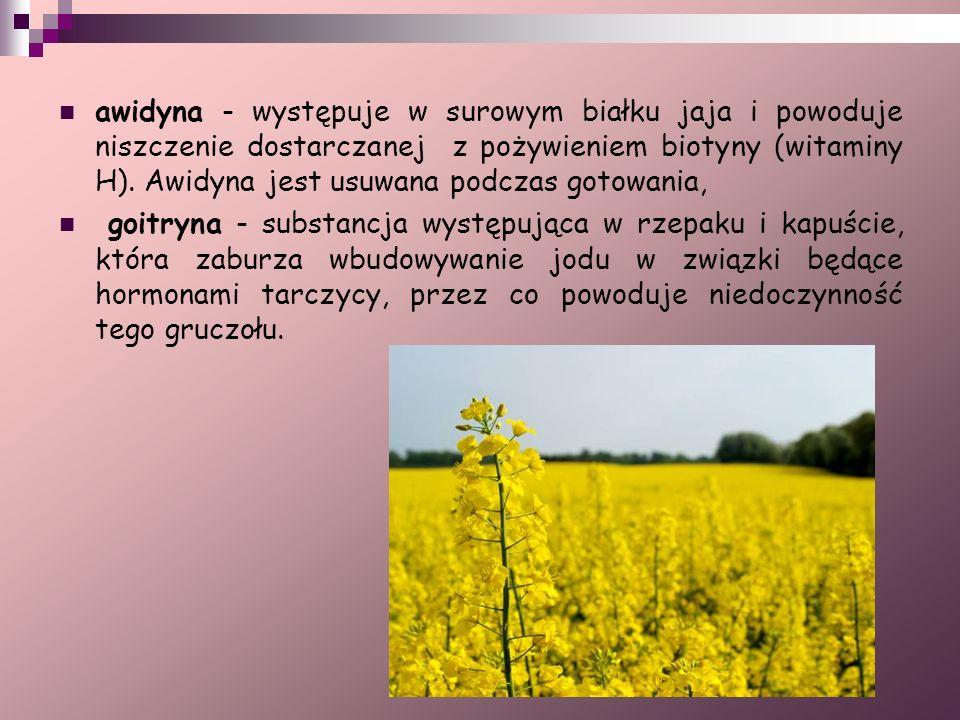 awidyna - występuje w surowym białku jaja i powoduje niszczenie dostarczanej z pożywieniem biotyny (witaminy H). Awidyna jest usuwana podczas gotowani
