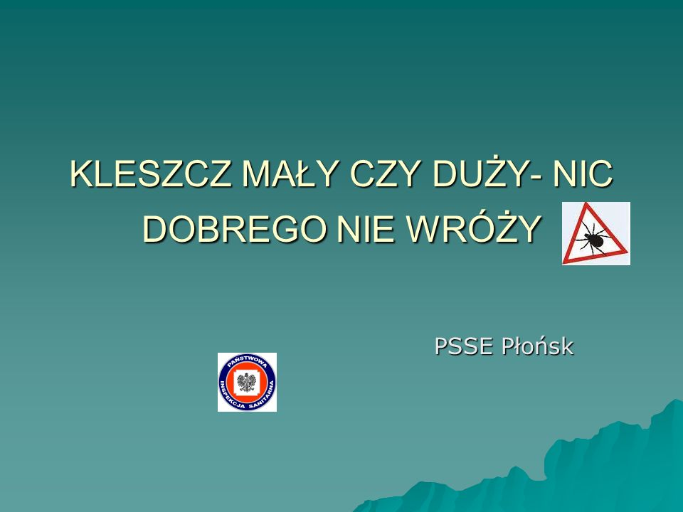 KLESZCZ MAŁY CZY DUŻY- NIC DOBREGO NIE WRÓŻY PSSE Płońsk
