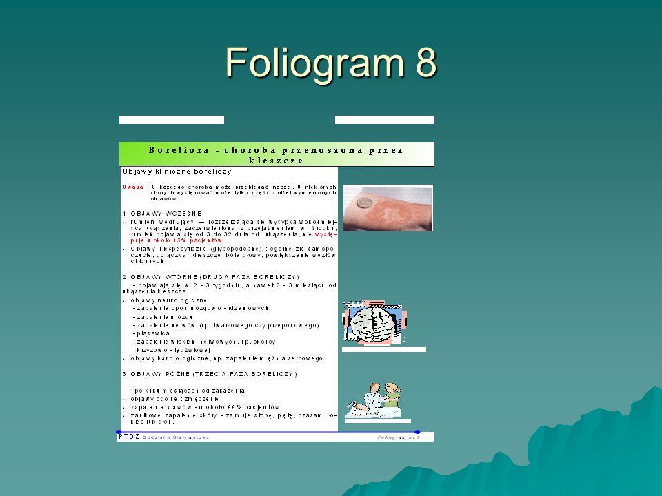 Foliogram 8