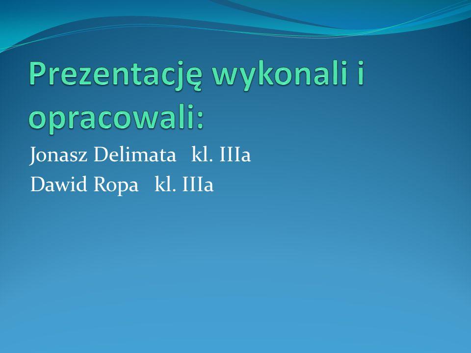 Jonasz Delimata kl. IIIa Dawid Ropa kl. IIIa