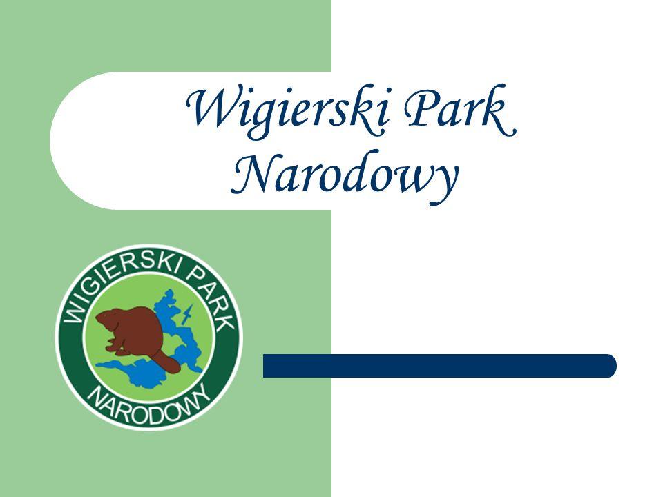 jeden z największych parków narodowych w Polsce.Został powołany z dniem 1 stycznia 1989 r.
