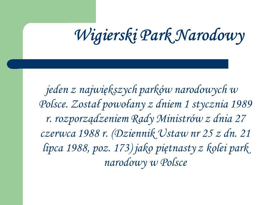 jeden z największych parków narodowych w Polsce. Został powołany z dniem 1 stycznia 1989 r. rozporządzeniem Rady Ministrów z dnia 27 czerwca 1988 r. (
