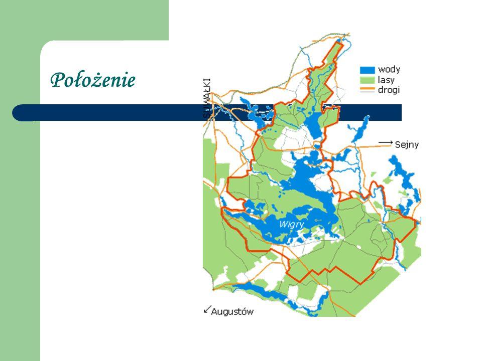 Wigierski Park Narodowy położony jest na północnym skraju Puszczy Augustowskiej, Geograficznie Park leży w granicach Pojezierza Litewskiego i obejmuje fragmenty trzech mezoregionów: Pojezierza Zachodniosuwalskiego, Pojezierza Wschodniosuwalskiego i Równiny Augustowskiej.