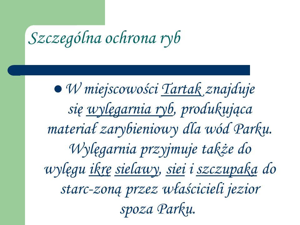 Szczególna ochrona ryb W miejscowości Tartak znajduje się wylęgarnia ryb, produkująca materiał zarybieniowy dla wód Parku. Wylęgarnia przyjmuje także