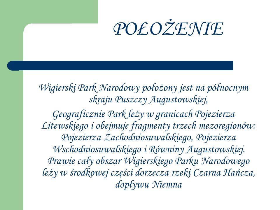 Wigierski Park Narodowy położony jest na północnym skraju Puszczy Augustowskiej, Geograficznie Park leży w granicach Pojezierza Litewskiego i obejmuje