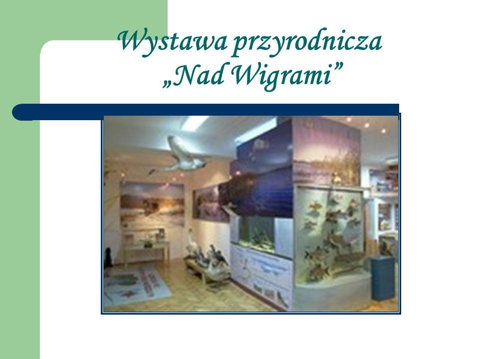 Wystawa przyrodnicza Nad Wigrami