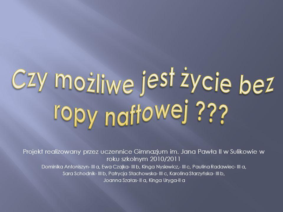 Projekt realizowany przez uczennice Gimnazjum im. Jana Pawła II w Sulikowie w roku szkolnym 2010/2011 Dominika Antoniszyn- III a, Ewa Czajka- III b, K