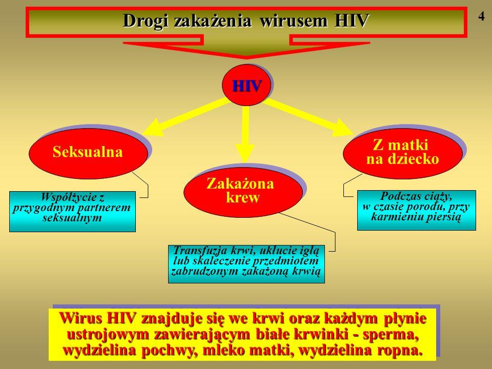 Drogi zakażenia wirusem HIV HIVHIV Seksualna Zakażona krew Z matki na dziecko Współżycie z przygodnym partnerem seksualnym Podczas ciąży, w czasie por