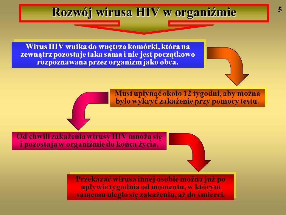 Wirus HIV wnika do wnętrza komórki, która na zewnątrz pozostaje taka sama i nie jest początkowo rozpoznawana przez organizm jako obca. Musi upłynąć ok