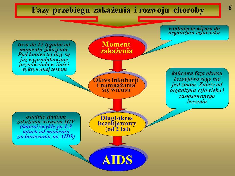 AIDS Fazy przebiegu zakażenia i rozwoju choroby wniknięcie wirusa do organizmu człowieka trwa do 12 tygodni od momentu zakażenia. Pod koniec tej fazy