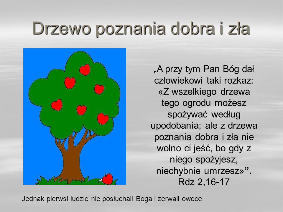 Drzewo poznania dobra i zła A przy tym Pan Bóg dał człowiekowi taki rozkaz: «Z wszelkiego drzewa tego ogrodu możesz spożywać według upodobania; ale z drzewa poznania dobra i zła nie wolno ci jeść, bo gdy z niego spożyjesz, niechybnie umrzesz».