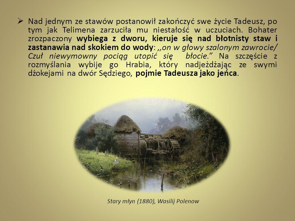 Nad jednym ze stawów postanowił zakończyć swe życie Tadeusz, po tym jak Telimena zarzuciła mu niestałość w uczuciach. Bohater zrozpaczony wybiega z dw