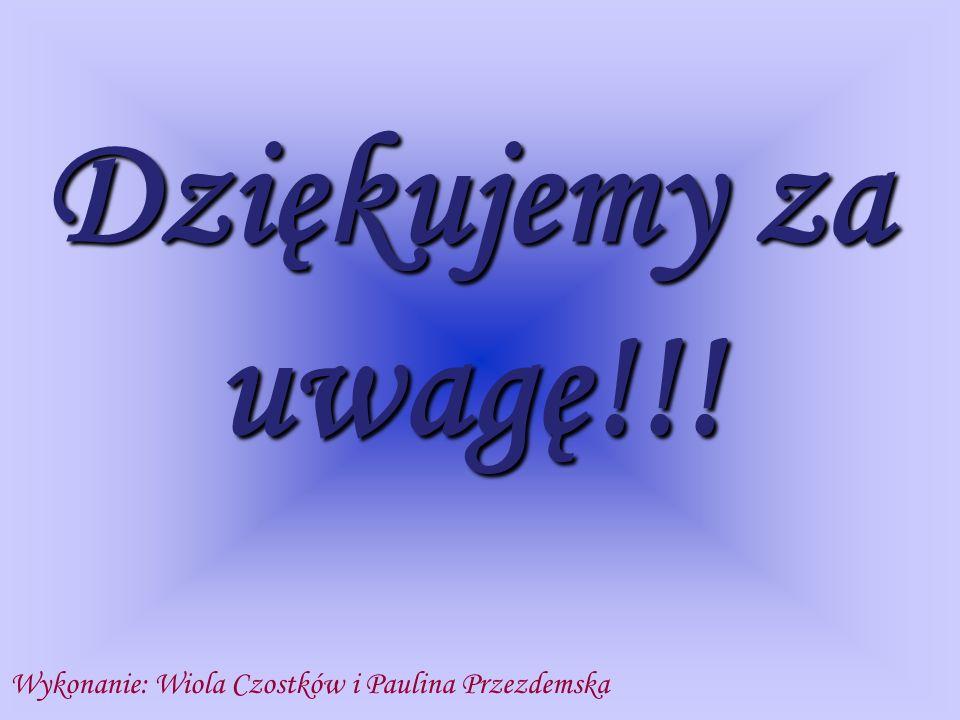 Wykonanie: Wiola Czostków i Paulina Przezdemska Dziękujemy za uwagę!!!